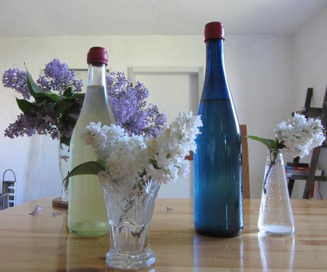 Flieder-Sirup von weißen Blüten